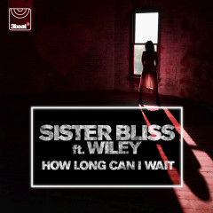How Long Can I Wait - Sister Bliss, Wiley