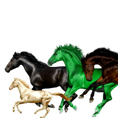 Old Town Road (Remix) - Lil Nas X, Billy Ray Cyrus, Young Thug, Mason Ramsey