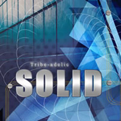 Solid - Tribeadelic Records - Various Artists