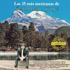 Las 15 Mas Mexicanas De Guadalupe Trigo - Guadalupe Trigo