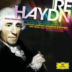 re:Haydn - Various Artists