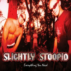 Everything You Need - Slightly Stoopid