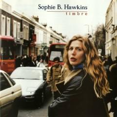 Timbre - Sophie B. Hawkins