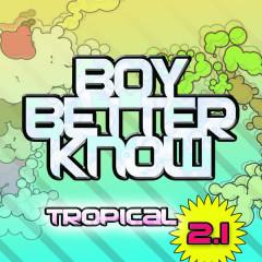 Tropical 2.1 - Preditah, DJ Q, JME