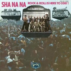 Rock & Roll Is Here to Stay - Sha Na Na