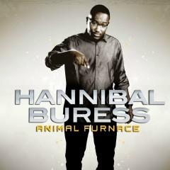 Animal Furnace - Hannibal Buress