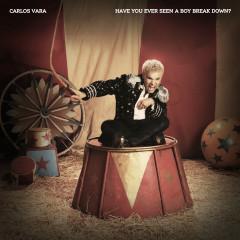 Have You Ever Seen a Boy Break Down? - Carlos Vara