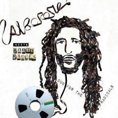 Alborosie Meets Roots Radics: Dub For The Radicals - Alborosie