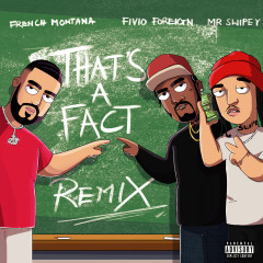 That's A Fact (Remix) - French Montana, Fivio Foreign, Mr. Swipey
