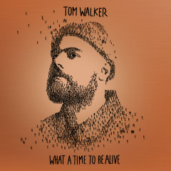 Better Half of Me - Tom Walker