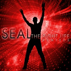 The Right Life (The Remixes) - Seal