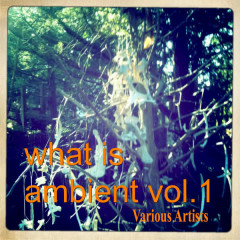 What Is Ambient Vol.1 - Various Artists