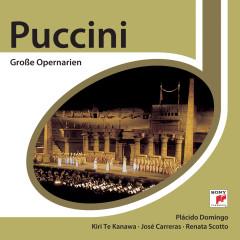 Puccini: Berühmte Opernarien - Various Artists