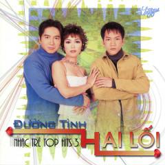 Top Hits 3 - Đường Tình Hai Lối - Various Artists