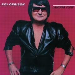 Laminar Flow - Roy Orbison