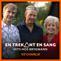 En Trekant En Sang 6 - Hits Hos Brygmann - Various Artists