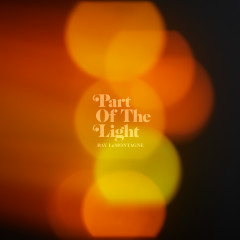 Part Of The Light - Ray LaMontagne