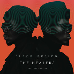 The Healers: The Last Chapter - Black Motion