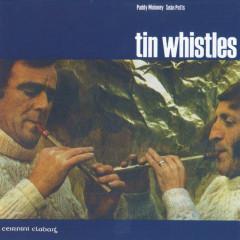 Tin Whistles - Paddy Moloney