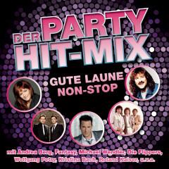 Der Party Hit Mix - 14 Gute-Laune Hits - Various Artists