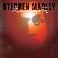 Mind Control - Stephen Marley