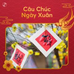 Câu Chúc Ngày Xuân - Various Artists
