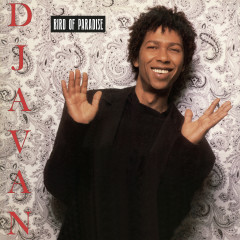 Bird of Paradise - Djavan