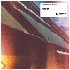 Remedy (feat. Mingue)