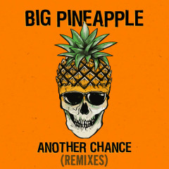 Another Chance (Remixes) - Big Pineapple