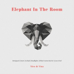 Elephant in the Room - Nico & Vinz