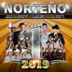 Nortenõ #1's 2019 - Various Artists