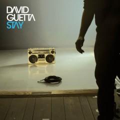 Stay - David Guetta