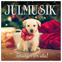 Julmusik - Julsånger för alla - Various Artists