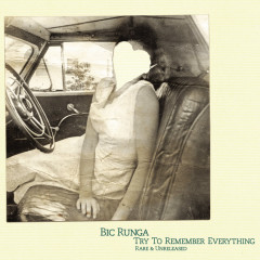 Try To Remember Everything - Bic Runga