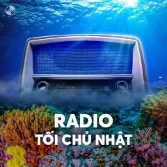 Radio Kì 65 – Song Ngư Mộng Mơ
