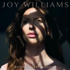 Before I Sleep (Acoustic) - Joy Williams