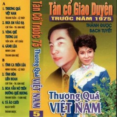 Thương Quá Việt Nam (Tân Cổ)
