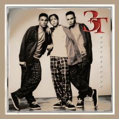 Brotherhood - 3T