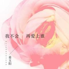 Tôi Sẽ Không Bao Giờ Yêu Ai / 我不会再爱上谁 (Single)