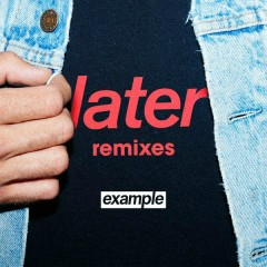 Later (Remixes) - Example