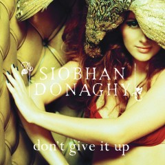 Don't Give It Up - Siobhán Donaghy