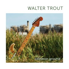 Common Ground - Walter Trout