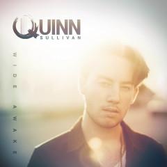 How Many Tears - Quinn Sullivan