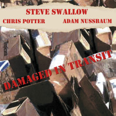 Damaged In Transit - Steve Swallow, Chris Potter, Adam Nussbaum