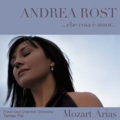 Che cosa è amor : Mozart Arias - Andrea Rost