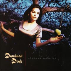 Shadows Wake Me - Damhnait Doyle