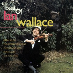 Nothing Quite Like It - Ian Wallace