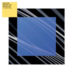 Where You Should Be (feat. Sam Frank) - Skream, Sam Frank