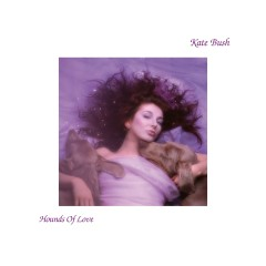 Hounds Of Love - Kate Bush