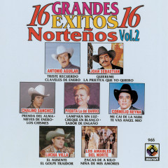 16 Grandes Éxitos Nortenõs, Vol. 2 - Various Artists